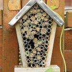 Der richtige Standort für ein Insektenhotel ist entscheidend