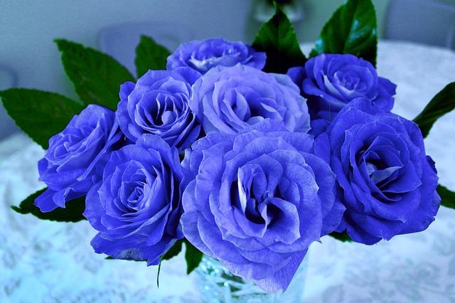 Eine blaue Rose erhält man mit blauer Tinte. Zum Färben sind auch Lebensmittelfarben möglich