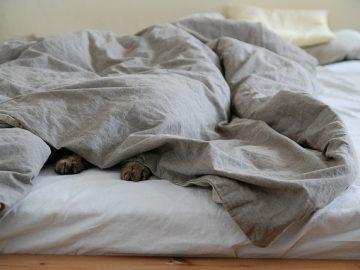 Bettdecken reinigen - so geht´s