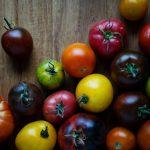 Tomaten selber vermehren
