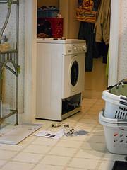 Wenn die Waschmaschine nicht abpumpt, kann man sich ganz einfach selber helfen. Meistens liegt es an einem verstopften Flusensieb