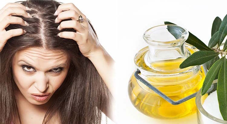 hausmittel-gegen-schuppen-tipps-oliveno%cc%88l-trockene-kopfhaut