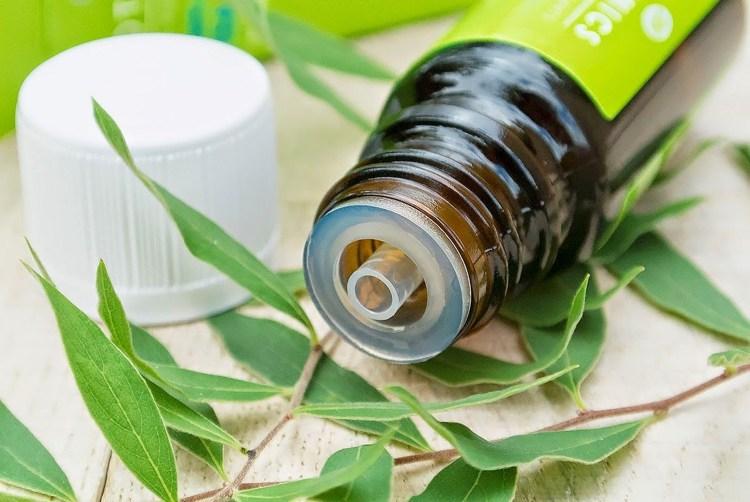 hausmittel-gegen-schuppen-tipps-teebaumöl-ätherische-öle