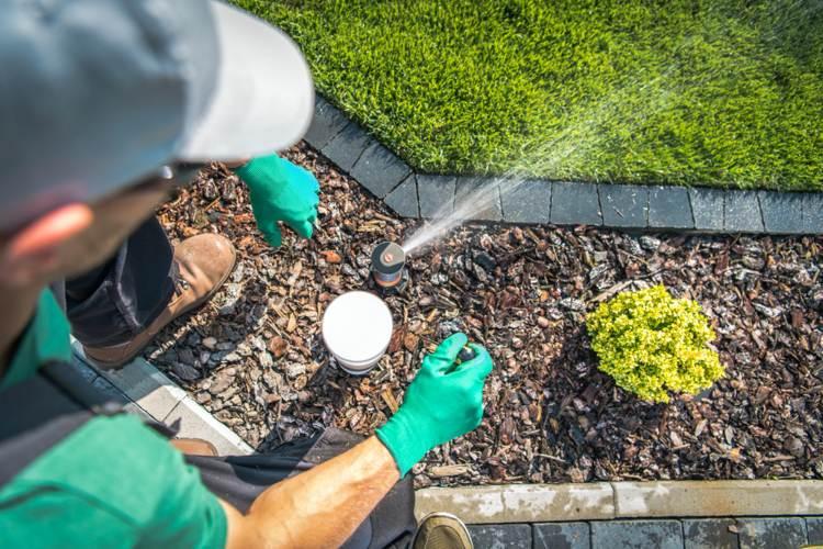 Hauswasserwerk für Gartenbewässerung installieren Gartensprinkler